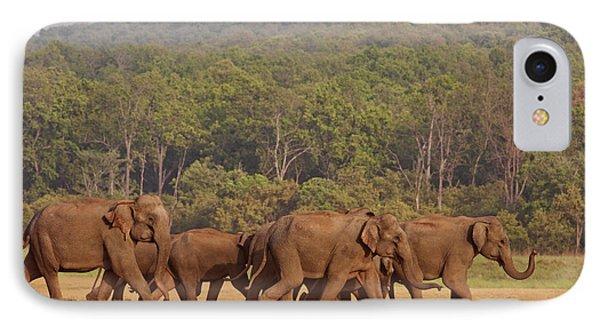 Indian Asian Elephant Herd IPhone Case by Jagdeep Rajput