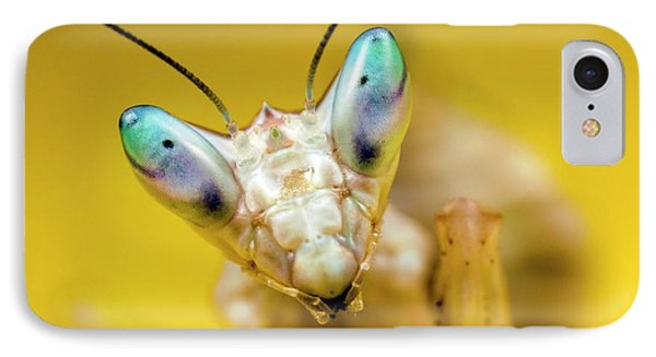 Indian Flower Mantis IPhone Case by Alex Hyde