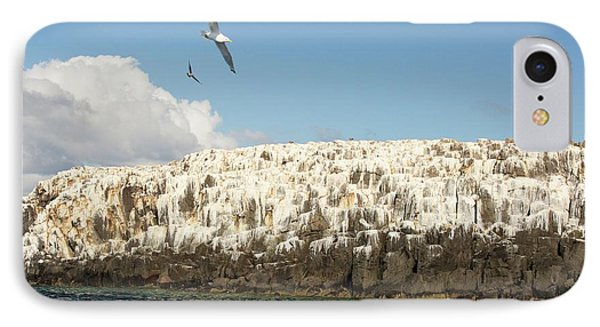 Inner Farne IPhone Case