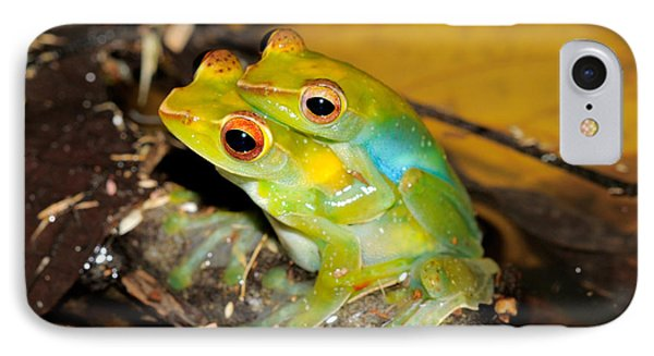 Jade Tree Frogs Mating IPhone Case by Fletcher & Baylis