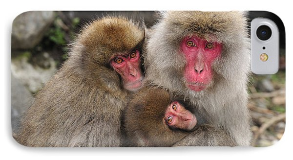 Japanese Macaque Mother With Young IPhone Case by Thomas Marent