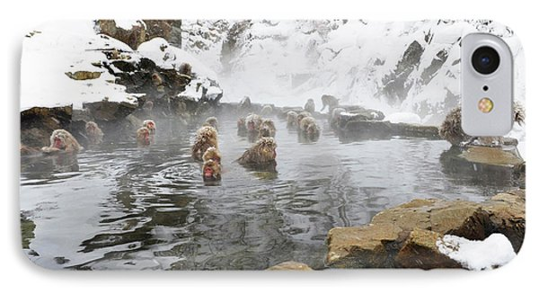 Japanese Macaques In A Hot Spring IPhone Case by Dr P. Marazzi