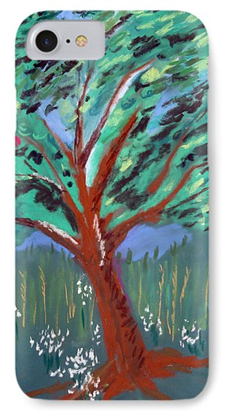 Johnny Appleseed Phone Case by Randy Ross