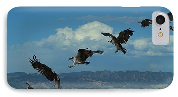 Landing Pattern Of The Osprey IPhone Case by Ernie Echols