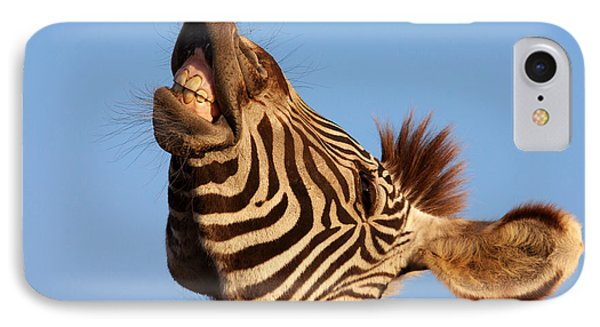 IPhone Case featuring the photograph Laughing Zebra by Nick  Biemans