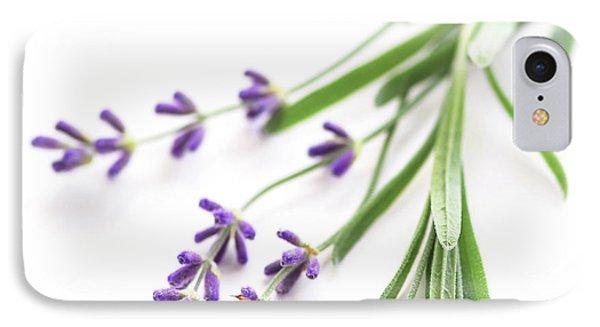 Lavender IPhone Case by Elena Elisseeva