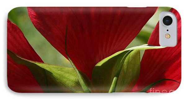 IPhone Case featuring the photograph Life Is But A Dream by Geri Glavis