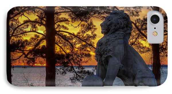 Lion At Sunset IPhone Case by Jerry Gammon