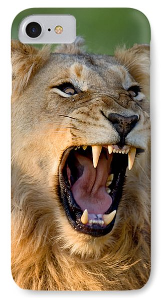 Lion Phone Case by Johan Swanepoel
