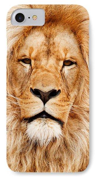 Lion Portrait Phone Case by Tilen Hrovatic