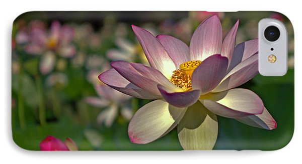 IPhone Case featuring the photograph Lotus Flower by Jerry Gammon