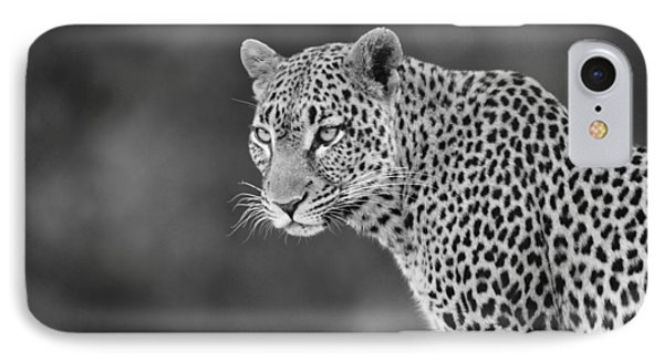 Lovely Leopard Phone Case by Michele Burgess
