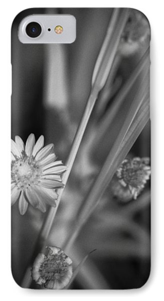 IPhone Case featuring the photograph Loxahatchee Flower by Bradley R Youngberg