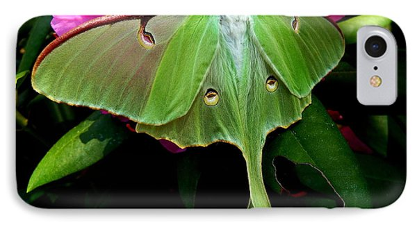 Lady Luna Moth IPhone Case by Janine Riley