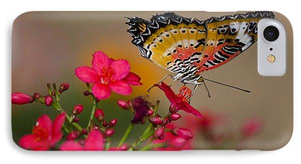 Malay Lacewing Butterfly  Phone Case by Saija  Lehtonen