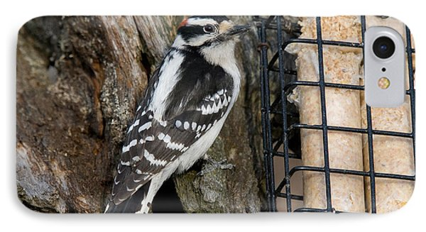 Male Hairy Woodpecker Phone Case by Linda Freshwaters Arndt