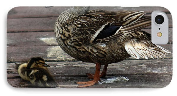 Mama Duck And Ducklings IPhone Case by Pamela Walton