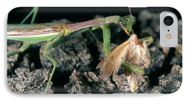 Mantis Eating Moth IPhone Case by Gregory G. Dimijian, M.D.