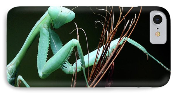 Mantis IPhone Case by Tomasz Litwin