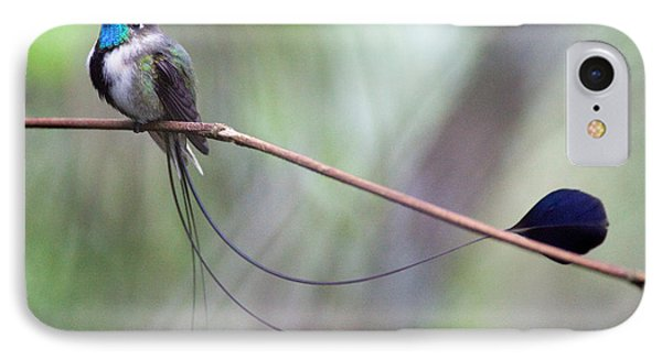 Marvelous Spatuletail Phone Case by Max Waugh