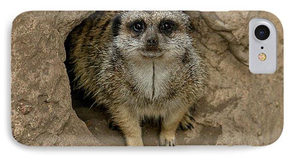Meerkat IPhone 7 Case by Ernie Echols