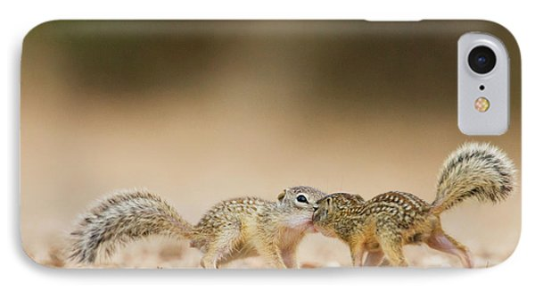 Mexican Ground Squirrel (spermophilus IPhone Case by Larry Ditto