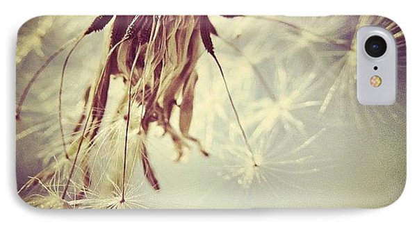 #mgmarts #dandelion #makeawish #wish IPhone Case by Marianna Mills