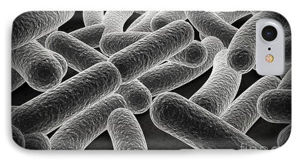 Microscopic View Of Bacilli Bacteria Phone Case by Stocktrek Images