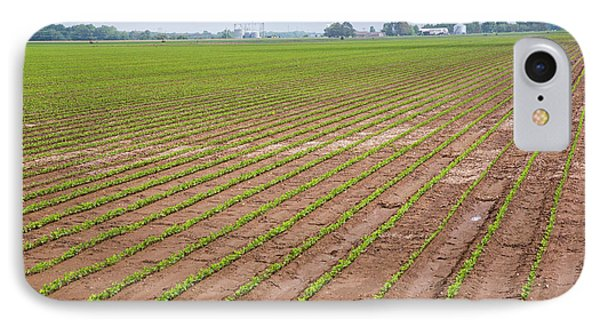 Mississippi Delta Farmland IPhone Case by Jim West