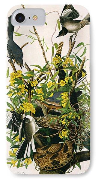 Mocking Birds And Rattlesnake IPhone Case by John James Audubon