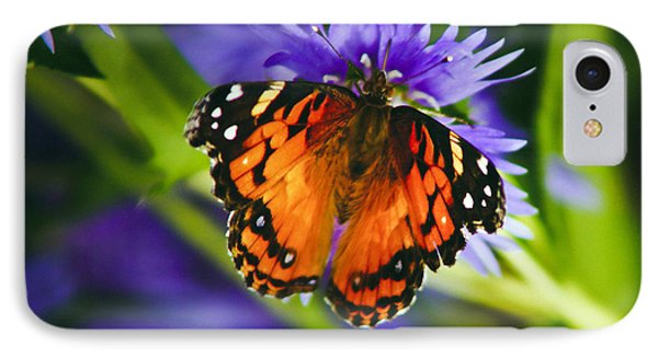 Monarch And Flower IPhone Case by Debra Crank