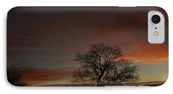Morning Sky In Bosque IPhone Case