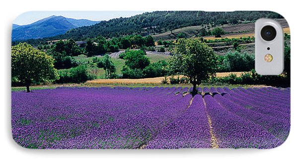 Mountain Behind A Lavender Field IPhone Case