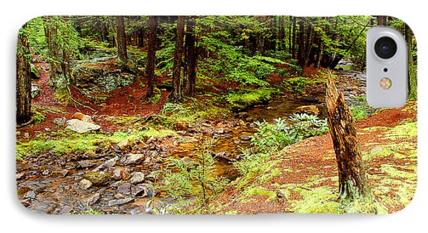 Mountain Stream With Hemlock Tree Stump IPhone Case by A Gurmankin