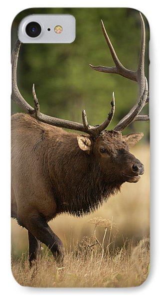 Mud Covered Antlers On A Rocky Mountain IPhone Case
