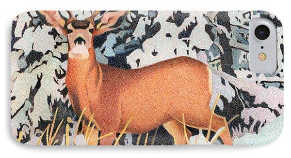 Mule Deer IPhone Case by Dan Miller