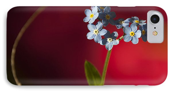 Nature Abstract Phone Case by Svetlana Sewell