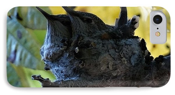 IPhone Case featuring the photograph Nesting And Humming by Jeremy McKay