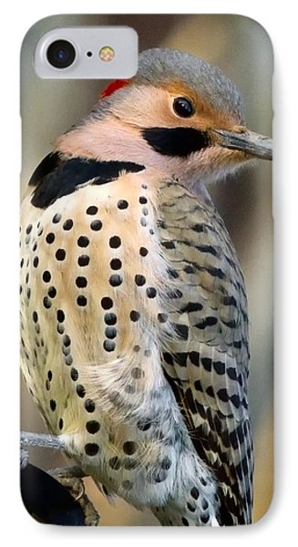Northern Flicker Phone Case by Bill Wakeley