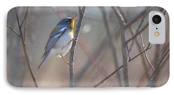 Northern Parula IPhone Case