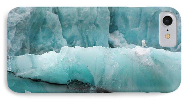 Norway Svalbard Spitsbergen Hornsund IPhone Case by Inger Hogstrom