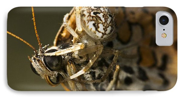 Oak Spider And Prey IPhone Case