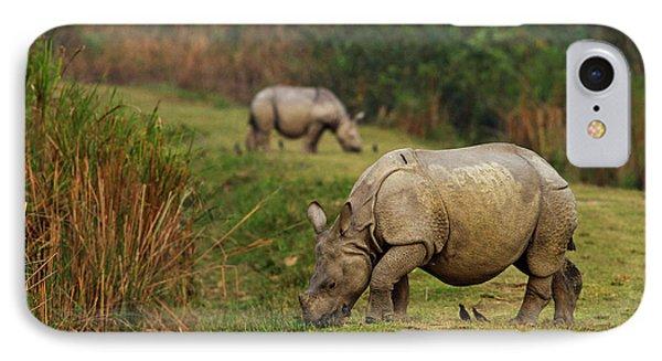 One-horned Rhinoceros Feeding IPhone Case by Jagdeep Rajput