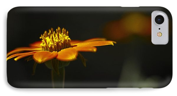 Orange Flower IPhone Case by Bradley R Youngberg