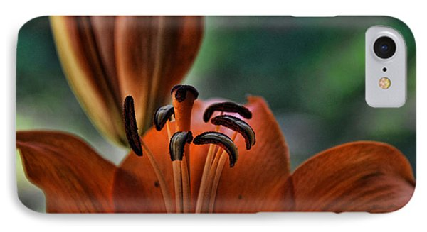 Orange Lilly  Phone Case by Saija  Lehtonen