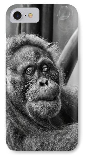 Orangutan Mama IPhone Case
