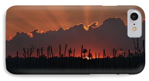 Orlando Wetlands Sunrise IPhone Case