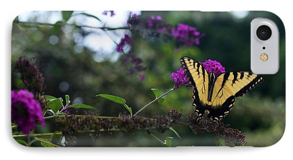 IPhone Case featuring the photograph Out Of Bounds II by Judy Wolinsky