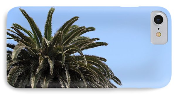 Palm Tree IPhone Case by Henrik Lehnerer