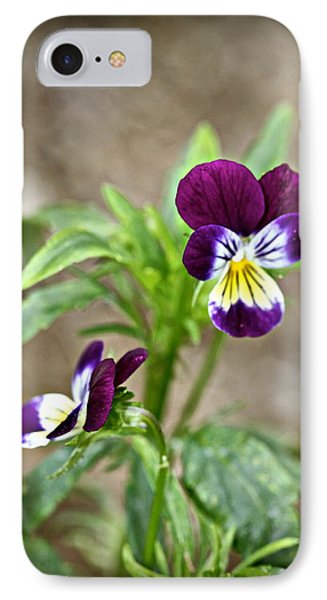 IPhone Case featuring the photograph Pansy by Michaela Preston